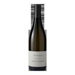 Domaine Antoine Lienhardt Bourgogne Pinot Noir 2015