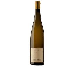Domaine Andrée & Jean-Louis Trapet Riesling Schlossberg Grand Cru Riesling 2009