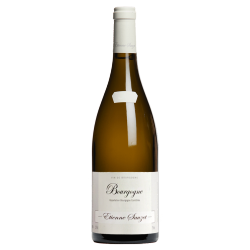 Domaine Etienne Sauzet Bourgogne 2017