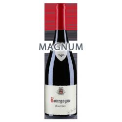 Jean-Marie Fourrier Bourgogne Pinot Noir 2017 MAGNUM