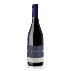 """Anne Gros Bourgogne Pinot Noir """"Jeunes Vignes"""" 2013"""