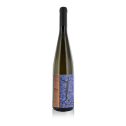 "Domaine Ostertag Alsace ""Fronholz"" Riesling 2013"